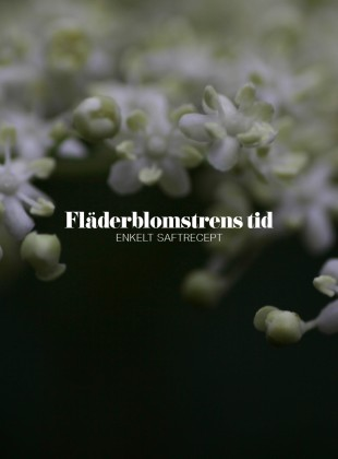 Slider_fläder