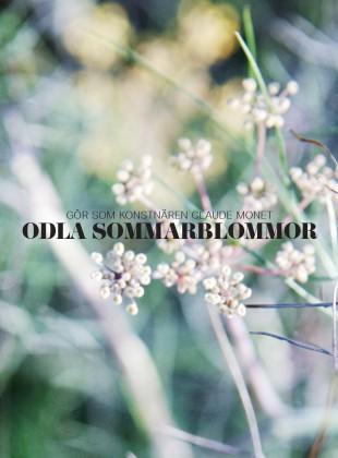 Slider_Sommarblommor