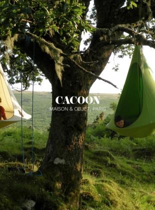 Slider_Cacoon