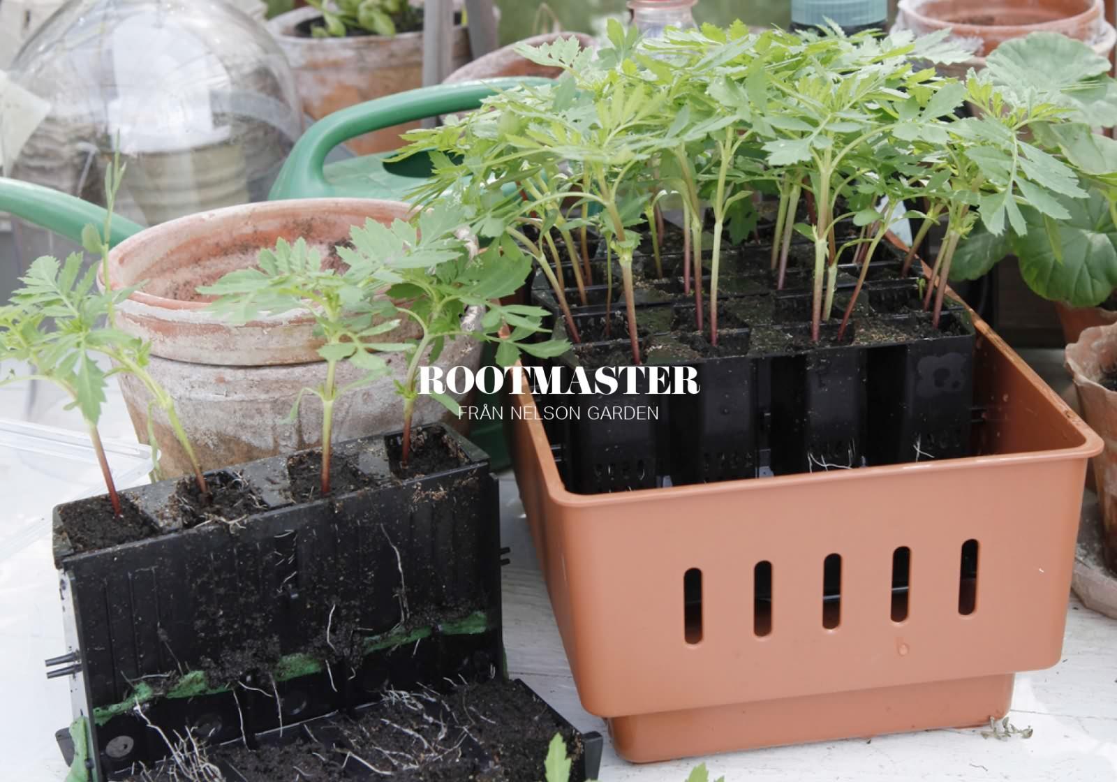 Slider_rootmaster