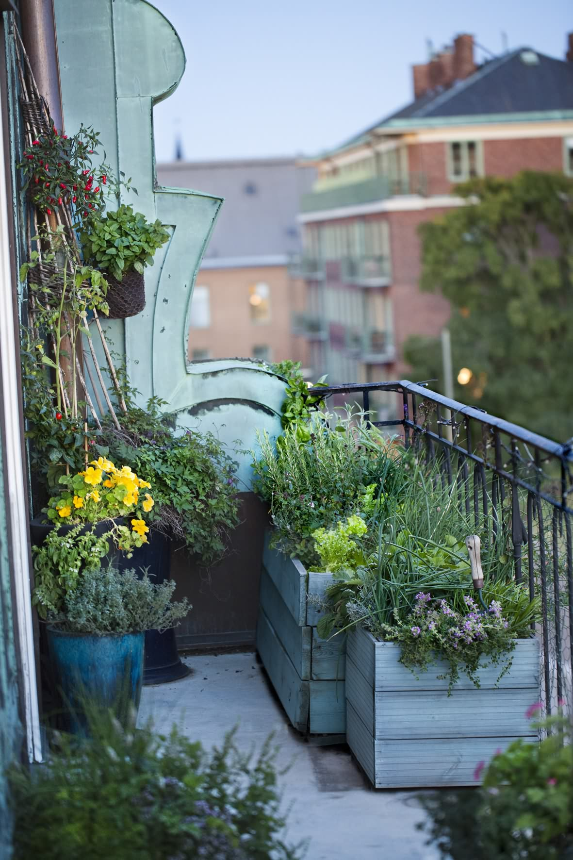 Brilliant balcony herb garden herbs throughout decorating.