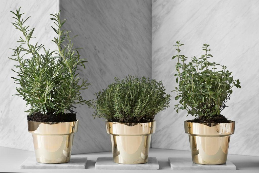 790-Herbs