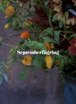 Slider_september3