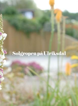 Solgropen