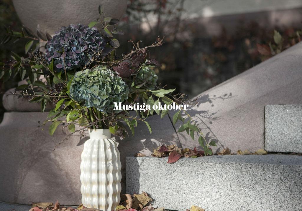 Slider_oktober