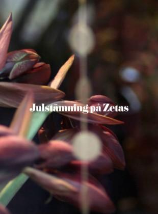 Zetas_Slider2